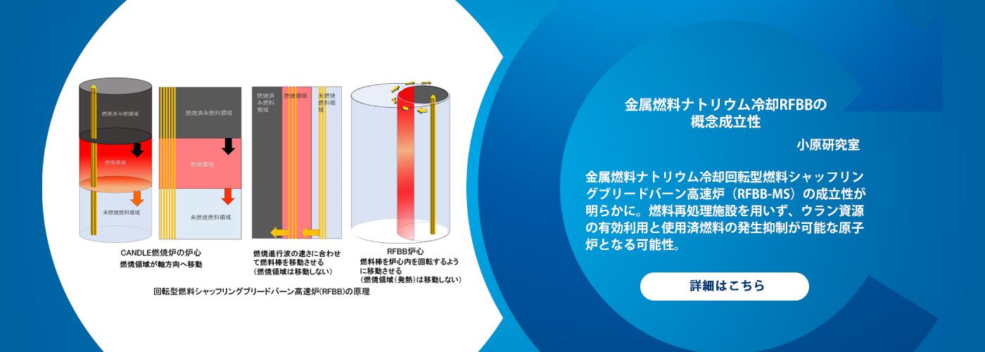 金属燃料ナトリウム冷却RFBBの概念成立性